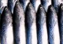 Deskonfia Sidadaun Estranjeiru Naok Ikan