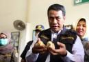 Ekspor Anak Ayam Ke Timor Leste Terus Meningka