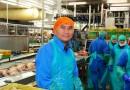 Australia Perkenalkan Dua Visa untuk 23.000 Lowongan Pekerjaan