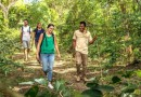 Ini Travel Advice Buat Warga Inggris di Timor Leste
