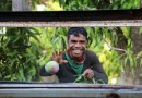 Australia Krisis Tenaga Memanen, Biasanya Diisi Warga Timor Leste